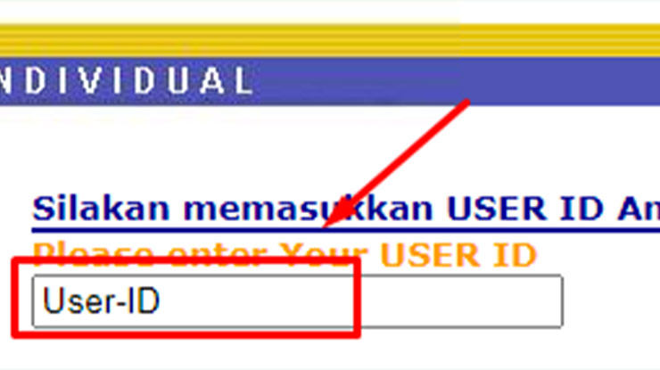 Masukan User ID